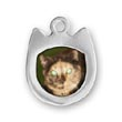Cat Picture Frame Charm
